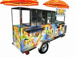 Shaved ice & Fruit combination cart